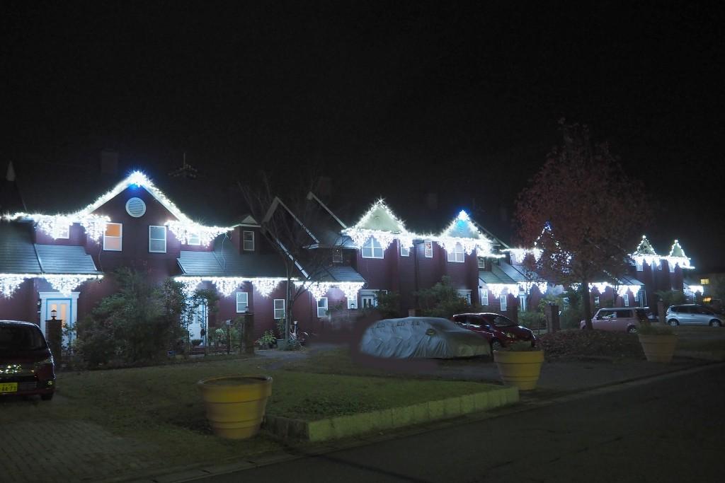 今年は、ガーデンハウスにもイルミネーションを点灯しています。